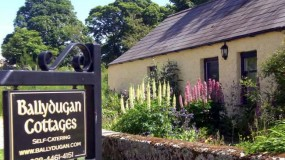 Huddleston's Cottage: Self Catering Downpatrick County Down
